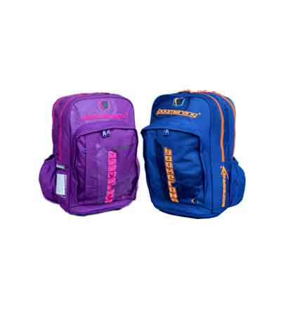 Boomerang LARGE ORTHO BACK PACK (BLACK, PINK, ROYAL)